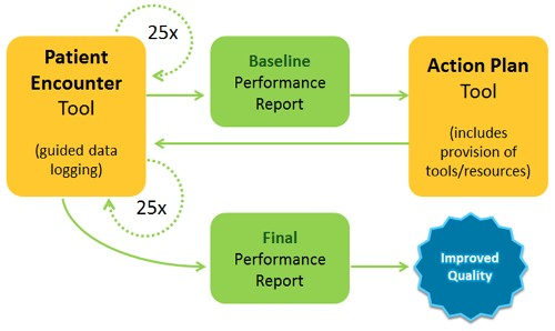 Schematic of the Practice Assessment Activity Process